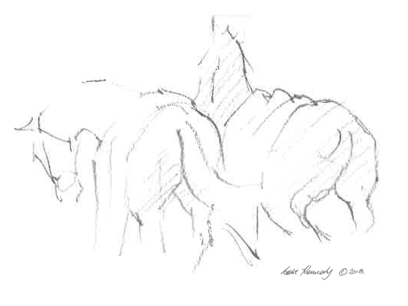 Polo ponies sketch by Eddie Kennedy